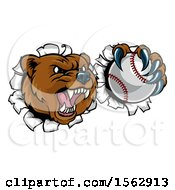 Poster, Art Print Of Bear Sports Mascot Breaking Through A Wall With A Baseball In A Paw