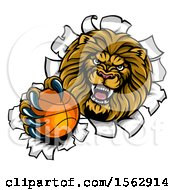 Poster, Art Print Of Tough Lion Sports Mascot Holding Out A Basketball And Breaking Through A Wall