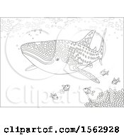 Lineart Whale Shark And Fish Over A Reef