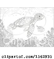 Lineart Sea Turtle And Fish Over A Reef