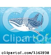 Clipart Of A Whale Shark And Fish Over A Reef Royalty Free Vector Illustration