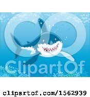 Clipart Of A Grinning Great White Shark Over A Reef Royalty Free Vector Illustration