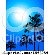 Sunny Blue Sky With Silhouetted Palm Trees