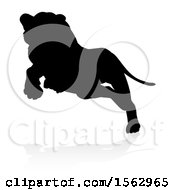 Clipart Of A Silhouetted Lioness Pouncing With A Shadow On A White Background Royalty Free Vector Illustration