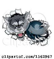 Clipart Of A Tough Wolf Mascot Holding Out A Bowling Ball In One Clawed Paw Royalty Free Vector Illustration