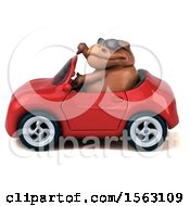 Clipart Of A 3d Brown T Rex Dinosaur Driving A Convertible On A White Background Royalty Free Illustration