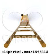 3d Yellow Frog Looking Up A Ladder On A White Background