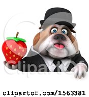 3d Gentleman Or Business Bulldog Holding A Strawberry On A White Background