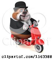 Clipart Of A 3d Gentleman Or Business Bulldog Holding A  On A White Background Royalty Free Illustration by Julos