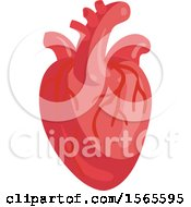 Clipart Of A Human Heart Royalty Free Vector Illustration by Vector Tradition SM