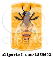 Clipart Of A Bee On Honeycombs Royalty Free Vector Illustration