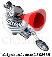 Clipart Of A 3d Zebra Biker Riding A Chopper Motorcycle On A White Background Royalty Free Illustration by Julos