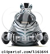 Clipart Of A 3d Zebra Working Out With Dumbbells On A White Background Royalty Free Illustration by Julos