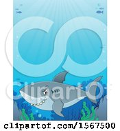 Clipart Of A Grinning Shark In The Ocean Royalty Free Vector Illustration