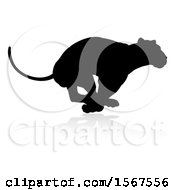 Clipart Of A Silhouetted Lioness Running With A Shadow On A White Background Royalty Free Vector Illustration by AtStockIllustration