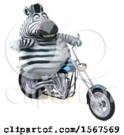 Clipart Of A 3d Zebra Biker Riding A Chopper Motorcycle On A White Background Royalty Free Illustration