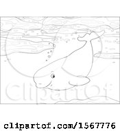 Clipart Of A Lineart Beluga Whale Swimming In The Ocean Royalty Free Vector Illustration