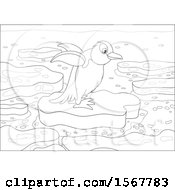 Lineart Penguin On An Ice Floe