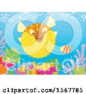 Clipart Of A Blowfish And Small Fish At A Coral Reef Royalty Free Vector Illustration