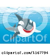 Clipart Of A Killer Whale Orca Swimming In The Ocean Royalty Free Vector Illustration