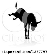 Black Silhouetted Donkey Bucking With A Reflection Or Shadow On A White Background
