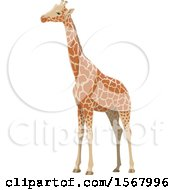 Clipart Of A Giraffe Royalty Free Vector Illustration by Vector Tradition SM