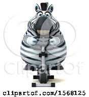 Clipart Of A 3d Zebra Exercising On A Spin Bike On A White Background Royalty Free Illustration by Julos