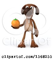 3d Brown Chocolate Lab Dog Holding An Orange On A White Background