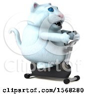 3d White Kitty Cat Exercising On A Spin Bike On A White Background