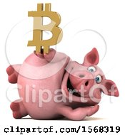 Clipart Of A 3d Chubby Pig Holding A Bitcoin Symbol On A White Background Royalty Free Illustration by Julos
