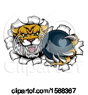 Clipart Of A Vicious Wildcat Mascot Breaking Through A Wall With A Bowling Ball Royalty Free Vector Illustration by AtStockIllustration