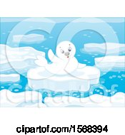 Poster, Art Print Of Cute Seal Pup On An Ice Floe