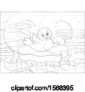 Poster, Art Print Of Lineart Cute Seal Pup On An Ice Floe