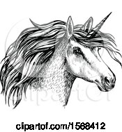 Sketched Unicorn