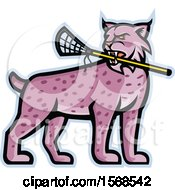Tough Bobcat Lynx Sports Mascot Holding A Lacrosse Stick In Its Mouth
