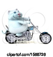 Clipart Of A 3d White Kitty Cat Biker Riding A Chopper Motorcycle On A White Background Royalty Free Illustration