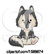 Cute Sitting Wolf