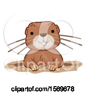 Clipart Of A Cute Gopher Emerging From A Hole Royalty Free Vector Illustration