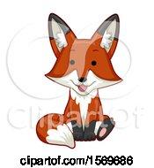 Cute Sitting Fox