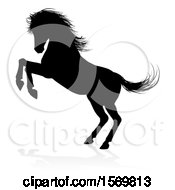 Silhouetted Rearing Horse With A Shadow On A White Background