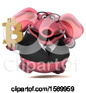 3d Pink Business Elephant Holding A Bitcoin Symbol On A White Background