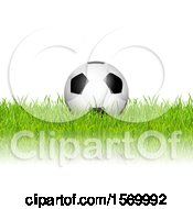 3d Soccer Ball In Grass Over White