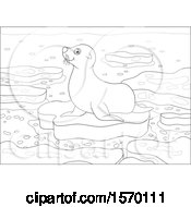 Poster, Art Print Of Lineart Cute Seal On An Ice Floe