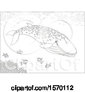 Clipart Of A Lineart Blue Whale Swimming With Fish Royalty Free Vector Illustration