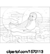 Poster, Art Print Of Lineart Spotted Seal On An Ice Floe