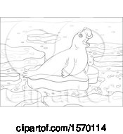 Lineart Cute Elephant Seal On An Ice Floe