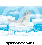 Poster, Art Print Of Spotted Seal On An Ice Floe