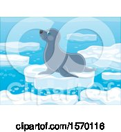 Poster, Art Print Of Cute Seal On An Ice Floe