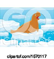 Poster, Art Print Of Cute Elephant Seal On An Ice Floe