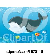 Clipart Of A Whale Swimming With Fish Royalty Free Vector Illustration